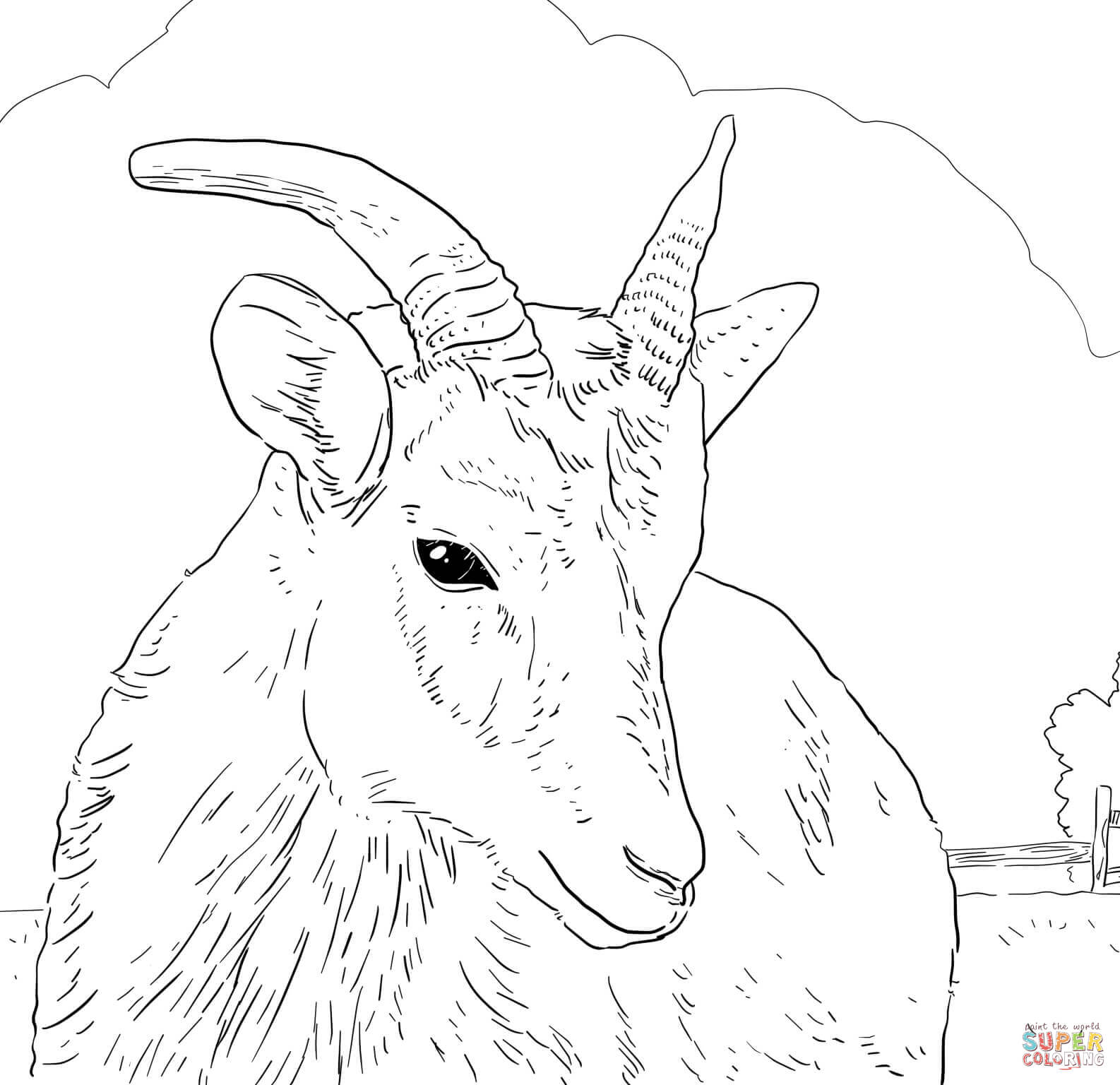 Bighorn Sheep coloring #20, Download drawings