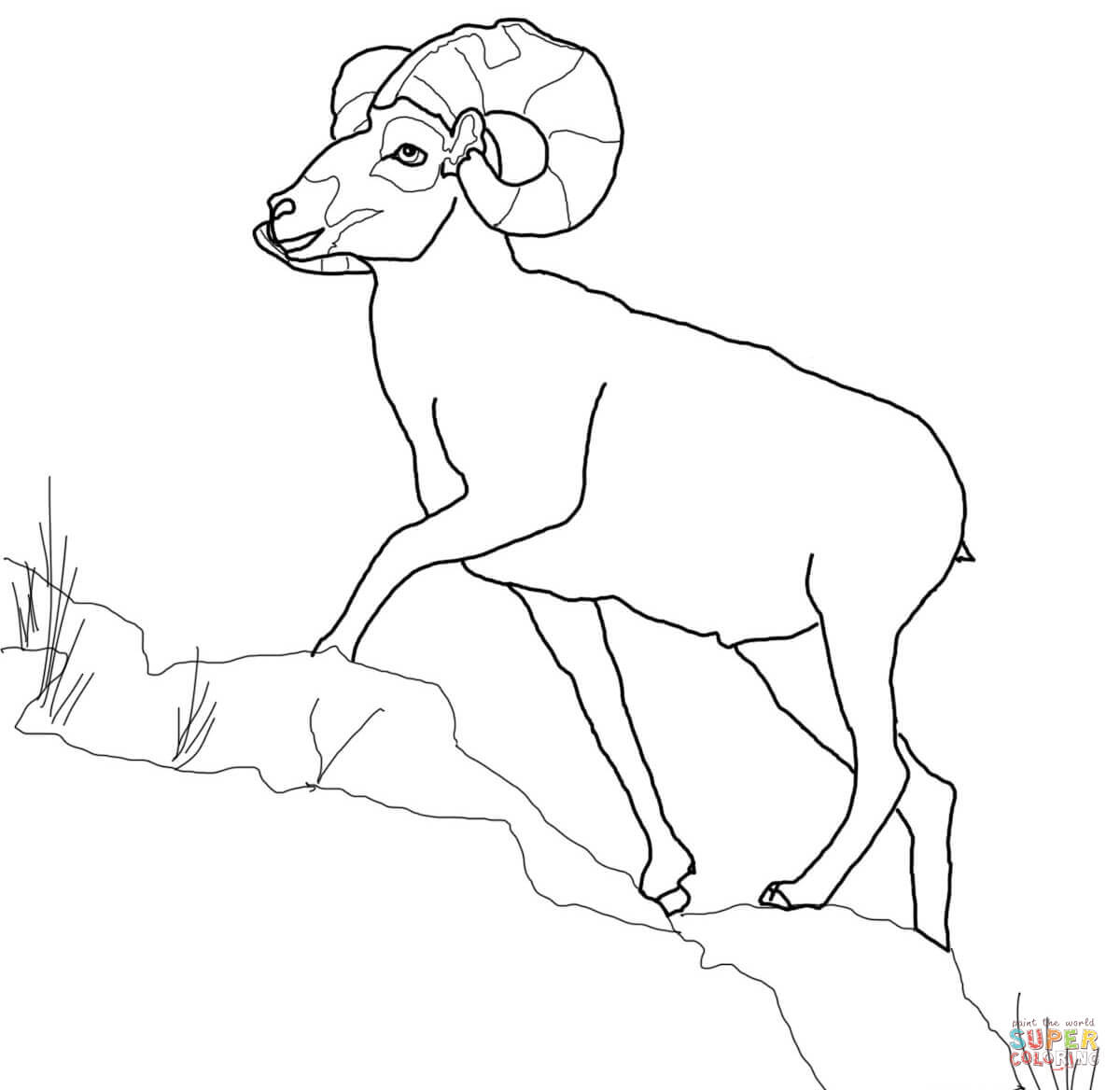 Bighorn Sheep coloring #11, Download drawings