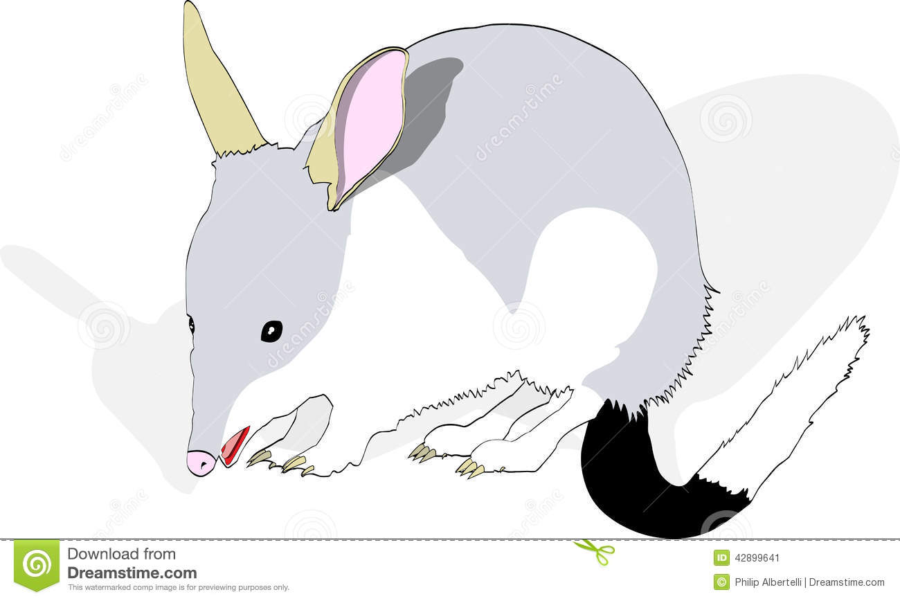 Bilby clipart #20, Download drawings