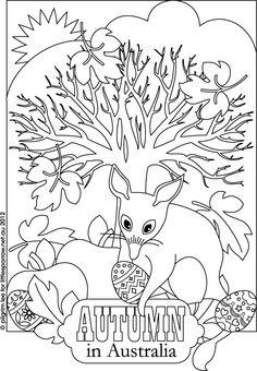 Bilby coloring #12, Download drawings