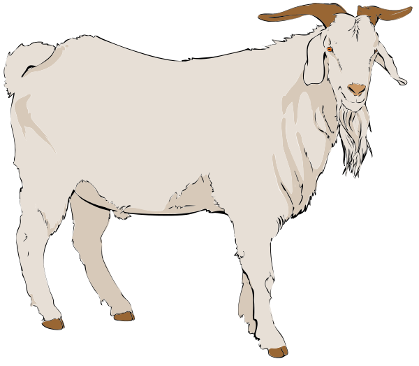 Billy Goat clipart #20, Download drawings