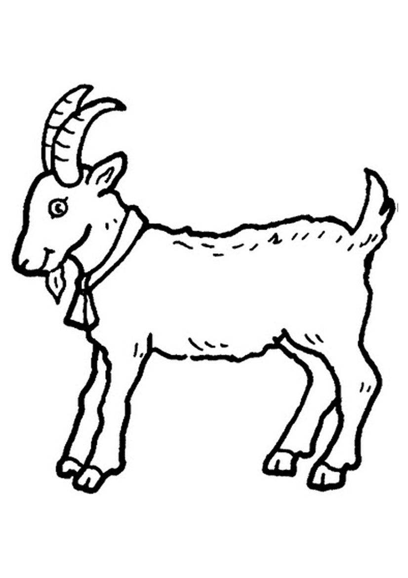 Billy Goat coloring #3, Download drawings