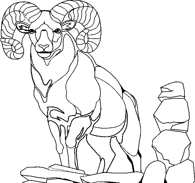 Billy Goat coloring #6, Download drawings
