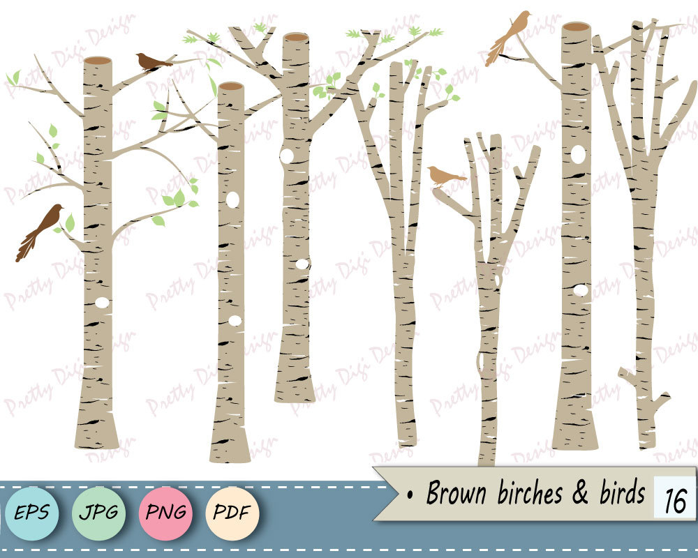 Birch clipart #19, Download drawings