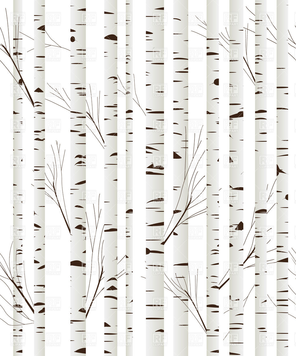 Birch clipart #2, Download drawings