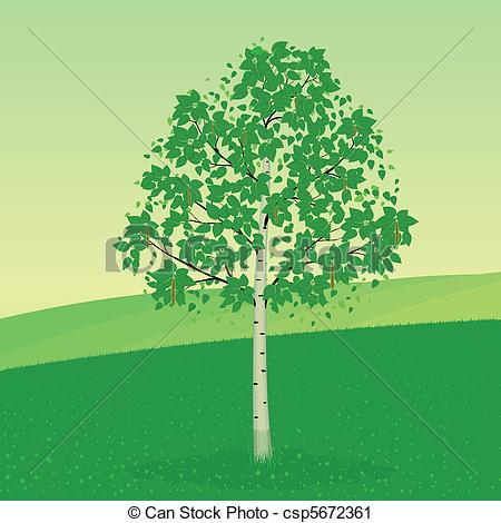 Birch clipart #3, Download drawings