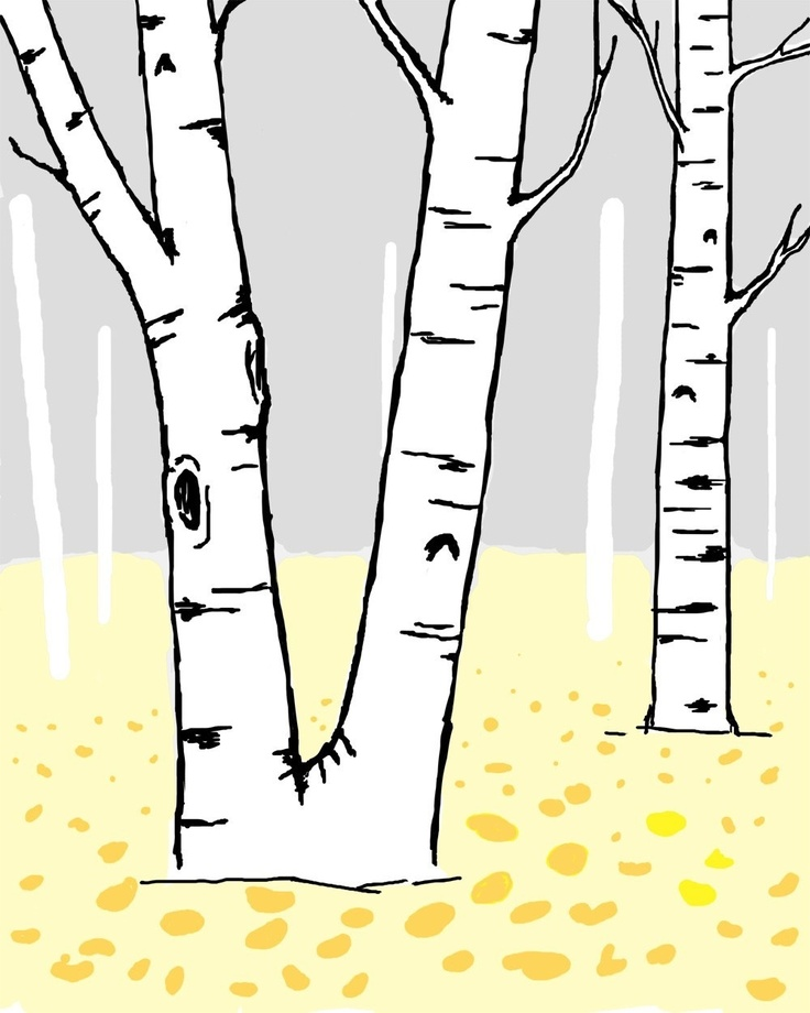 Birch clipart #6, Download drawings