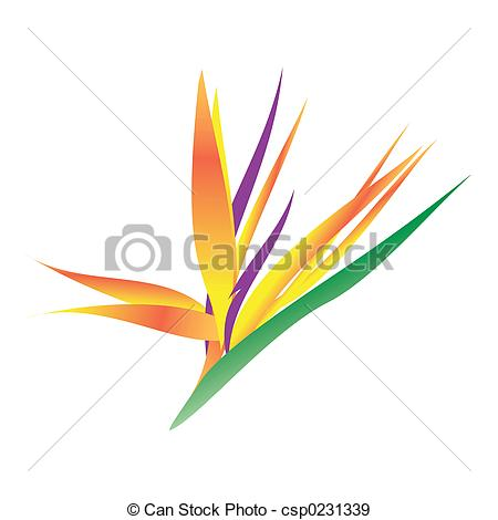 Bird Of Paradise clipart #19, Download drawings