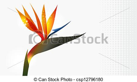 Bird Of Paradise clipart #6, Download drawings