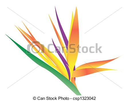 Bird Of Paradise clipart #16, Download drawings