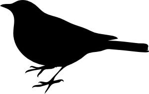 Bird svg #12, Download drawings