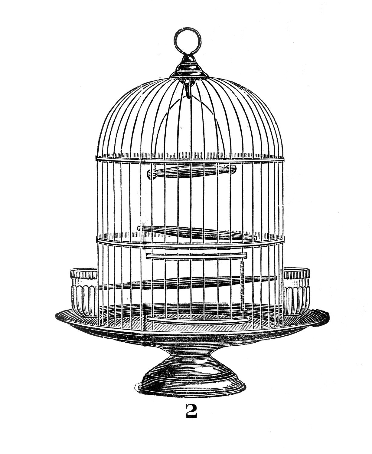 Birdcage clipart #13, Download drawings