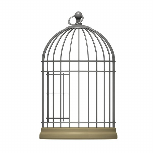 Birdcage clipart #16, Download drawings