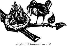 Birdfeeding clipart #9, Download drawings