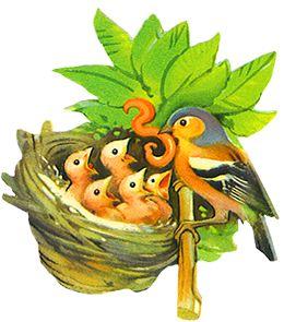 Birdfeeding clipart #4, Download drawings