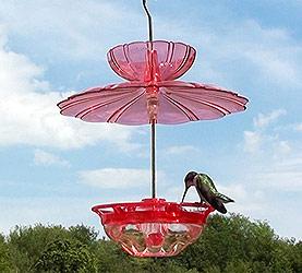 Birdfeeding clipart #6, Download drawings