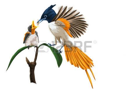 Birdfeeding clipart #9, Download drawings