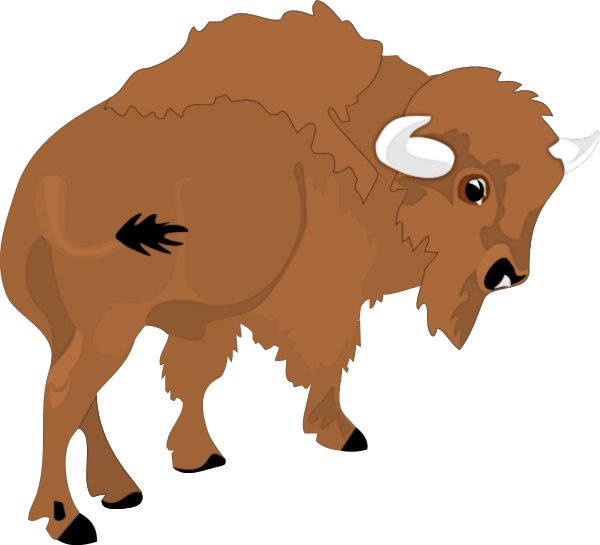 Bison clipart #11, Download drawings