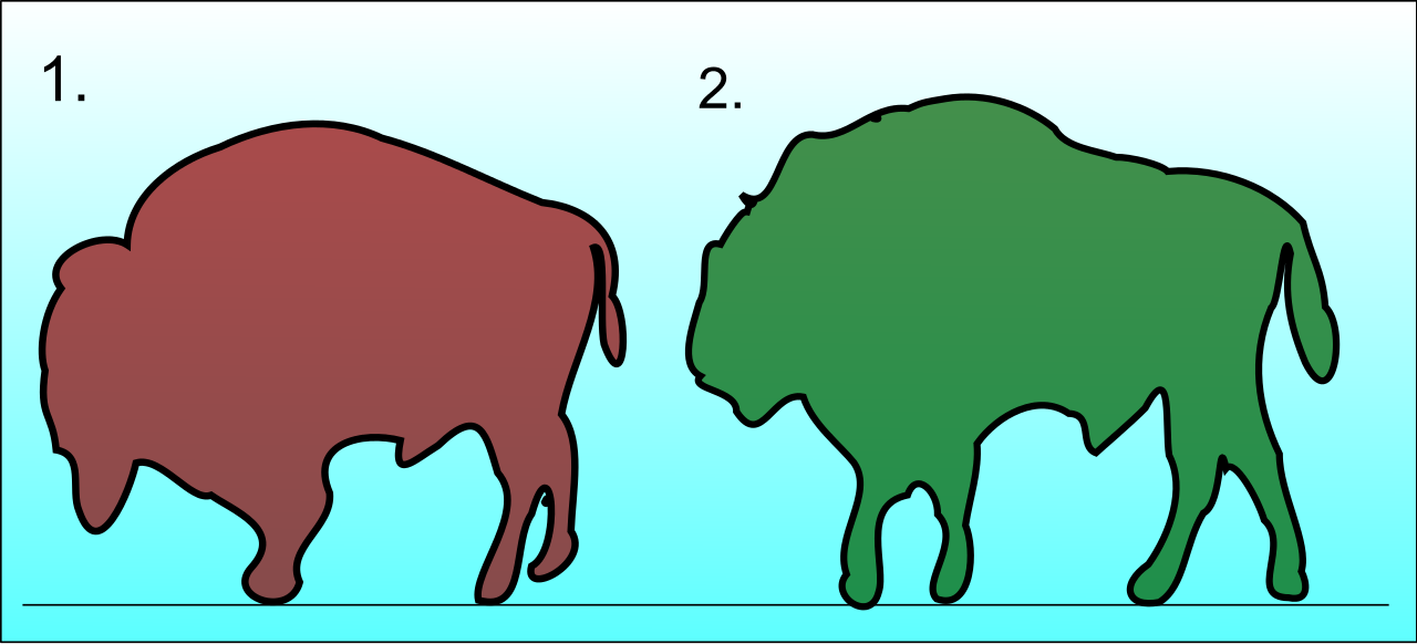 Bison svg #14, Download drawings