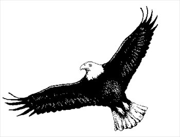 Black Eagle clipart #4, Download drawings