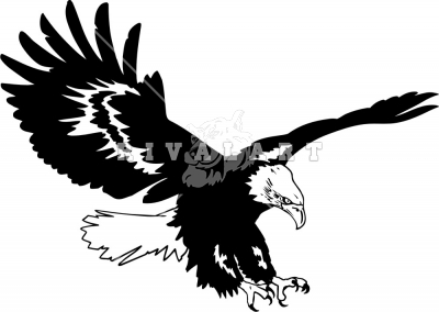 Black Eagle clipart #18, Download drawings