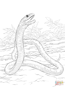 Eastern Green Mamba coloring #20, Download drawings
