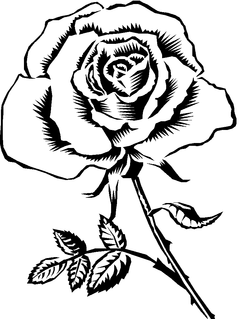 Black Rose coloring #10, Download drawings