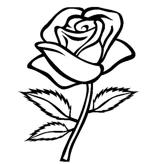 Black Rose coloring #3, Download drawings
