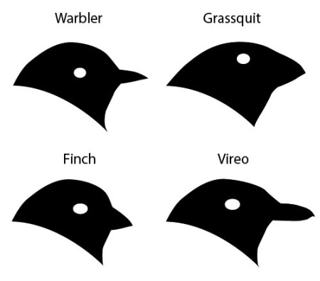 Black Trimian Warbler clipart #1, Download drawings