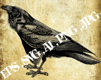 White-eared Warbler svg #6, Download drawings