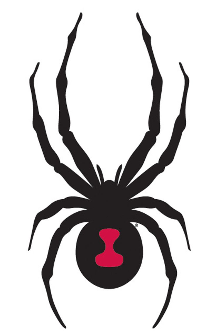 Black Widow clipart #5, Download drawings