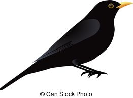 Common Blackbird clipart #19, Download drawings