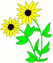 Black-eyed Susan clipart #20, Download drawings