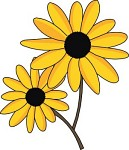 Black-eyed Susan clipart #17, Download drawings