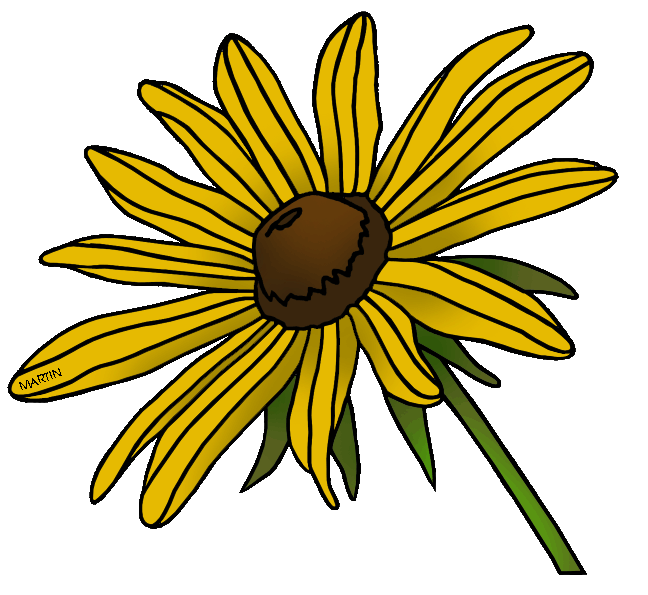 Black-eyed Susan clipart #6, Download drawings