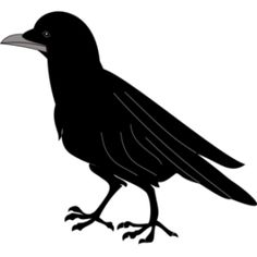 Black-masked Blackbird clipart #9, Download drawings