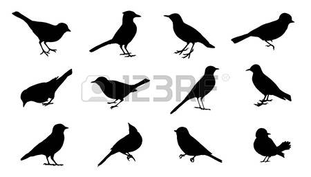 Black-masked Blackbird clipart #14, Download drawings
