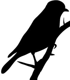 Black-masked Blackbird clipart #15, Download drawings