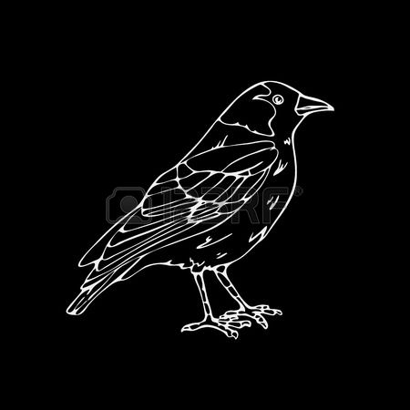 Black-masked Blackbird clipart #17, Download drawings