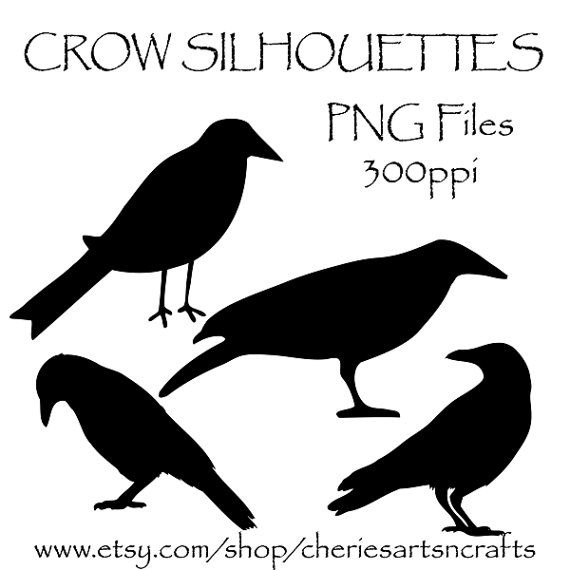 Black-masked Blackbird clipart #3, Download drawings