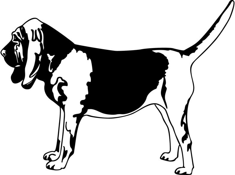 Bloodhound clipart #19, Download drawings