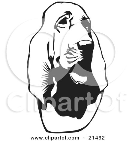 Bloodhound clipart #7, Download drawings