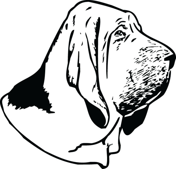 Bloodhound clipart #4, Download drawings