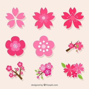 Blossom clipart #5, Download drawings
