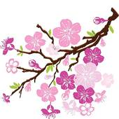 Blossom clipart #17, Download drawings