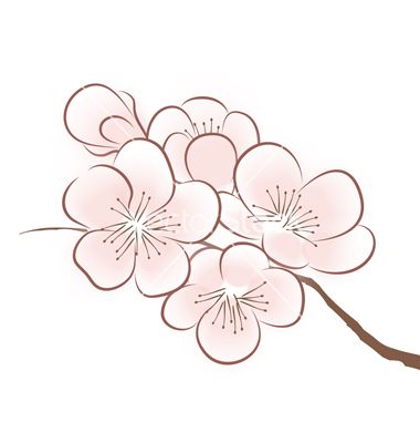 Blossom clipart #9, Download drawings
