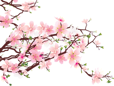 Blossom clipart #10, Download drawings