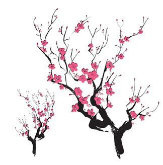 Sakura Blossom svg #15, Download drawings