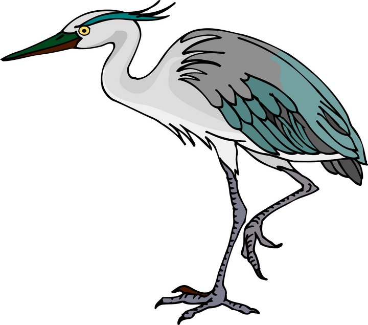 Great Egrets clipart #16, Download drawings
