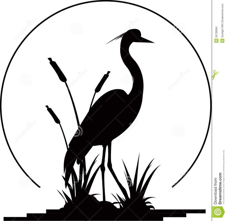 Blue Heron clipart #4, Download drawings